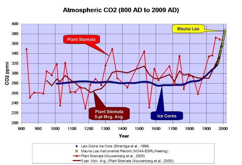 karbon werte senken