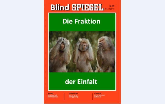 Blindspiegel-klein