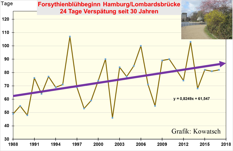 Berühmt Liniendiagramm Des Hausplans Galerie - Der Schaltplan ...