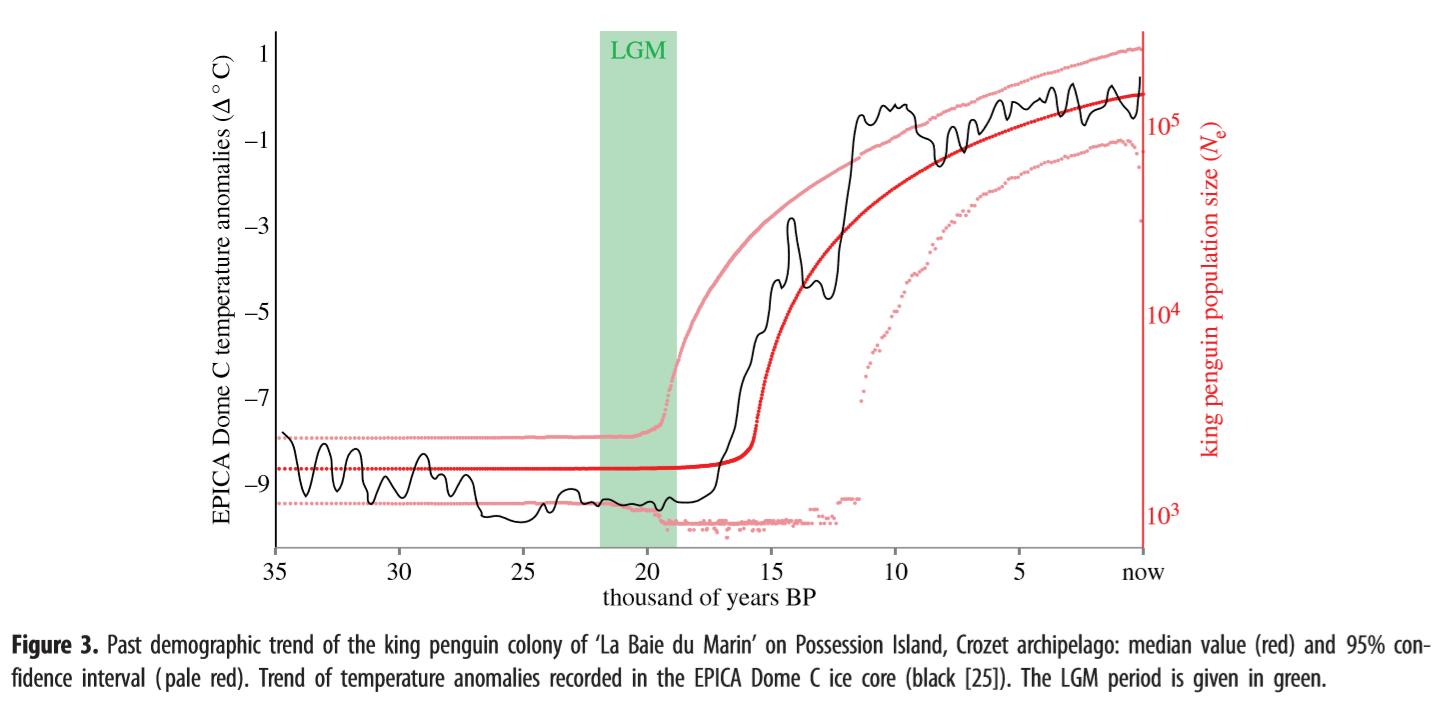 Monat Mrz 2018 Eike Europisches Institut Fr Klima Energie 3 1 Lgm Engine Diagram Bild Populationsentwicklung Der Kaiserpinguine Rote Linie