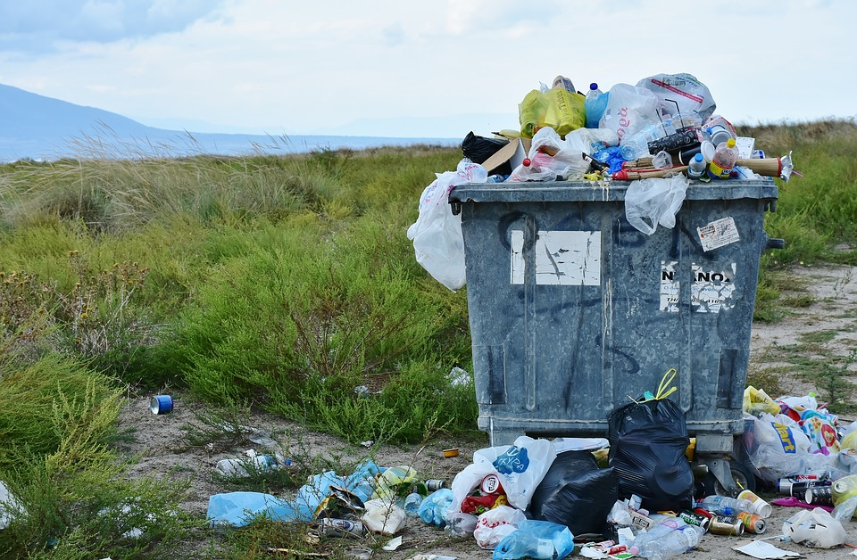 RitaE garbage-2729608_960_720