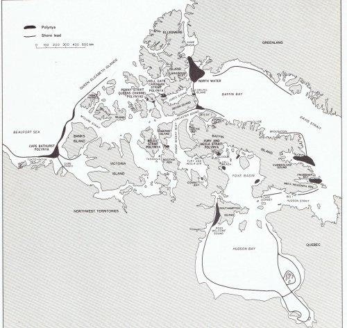 Foe Karte Der Kontinente Arktische Zukunft.Artikel Von Chris Frey Eike Europäisches Institut Für Klima