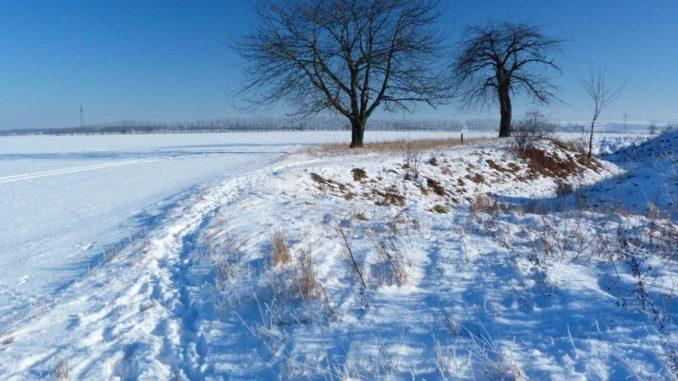 Hochwinter 2021 – etwas kälter als seine Vorgänger?